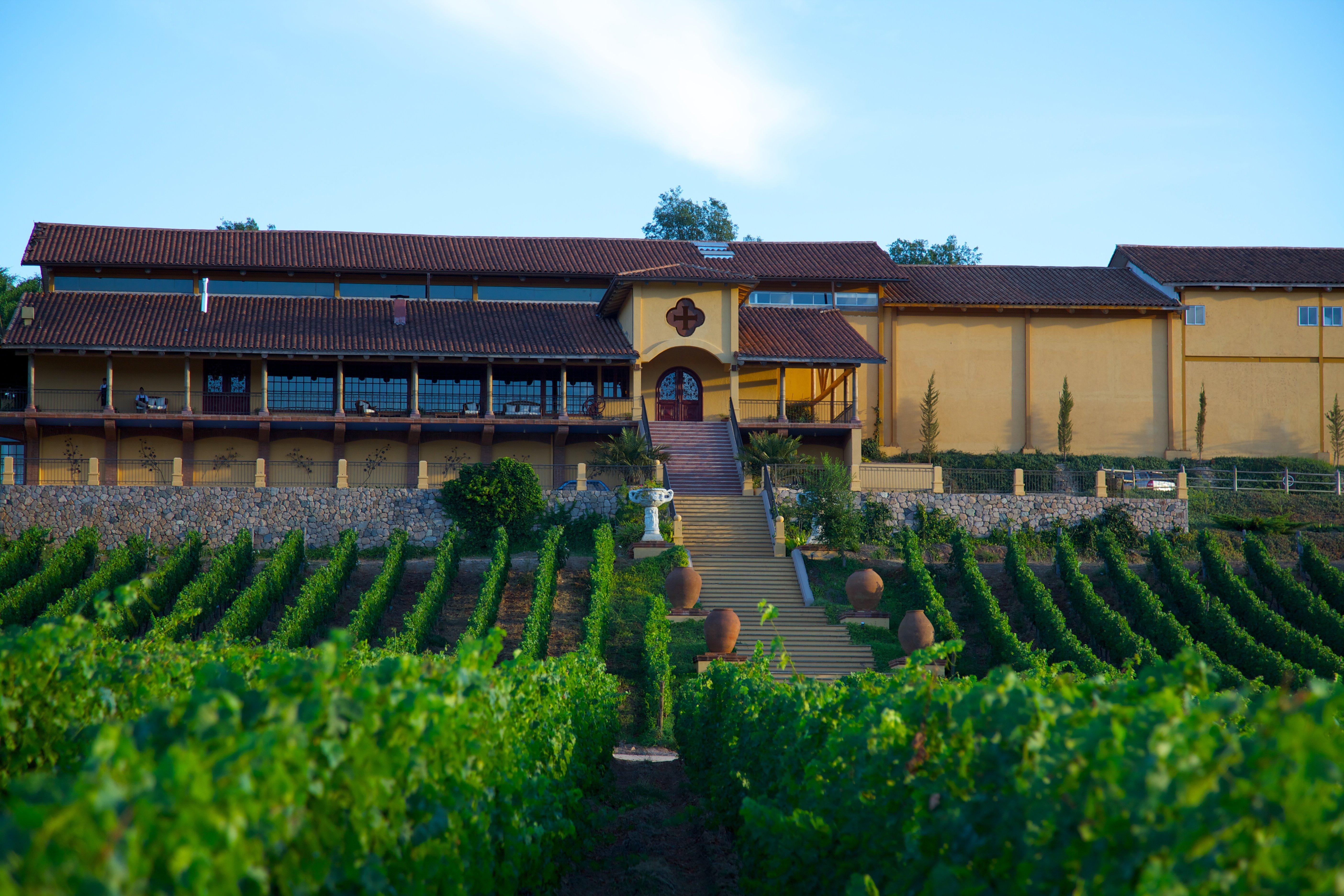 Bodega Viña Santa Cruz en Colchagua