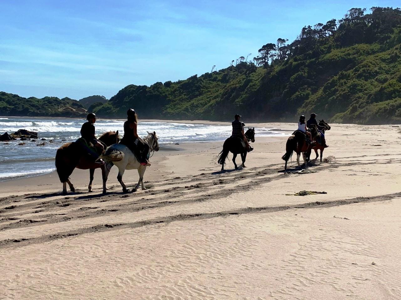 Cinco personas cabalgando en la playa del Hotel Mari Mari