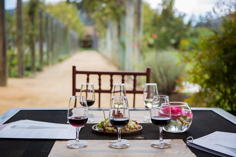 Mesa con degustación de seis vinos en Viña Matetic