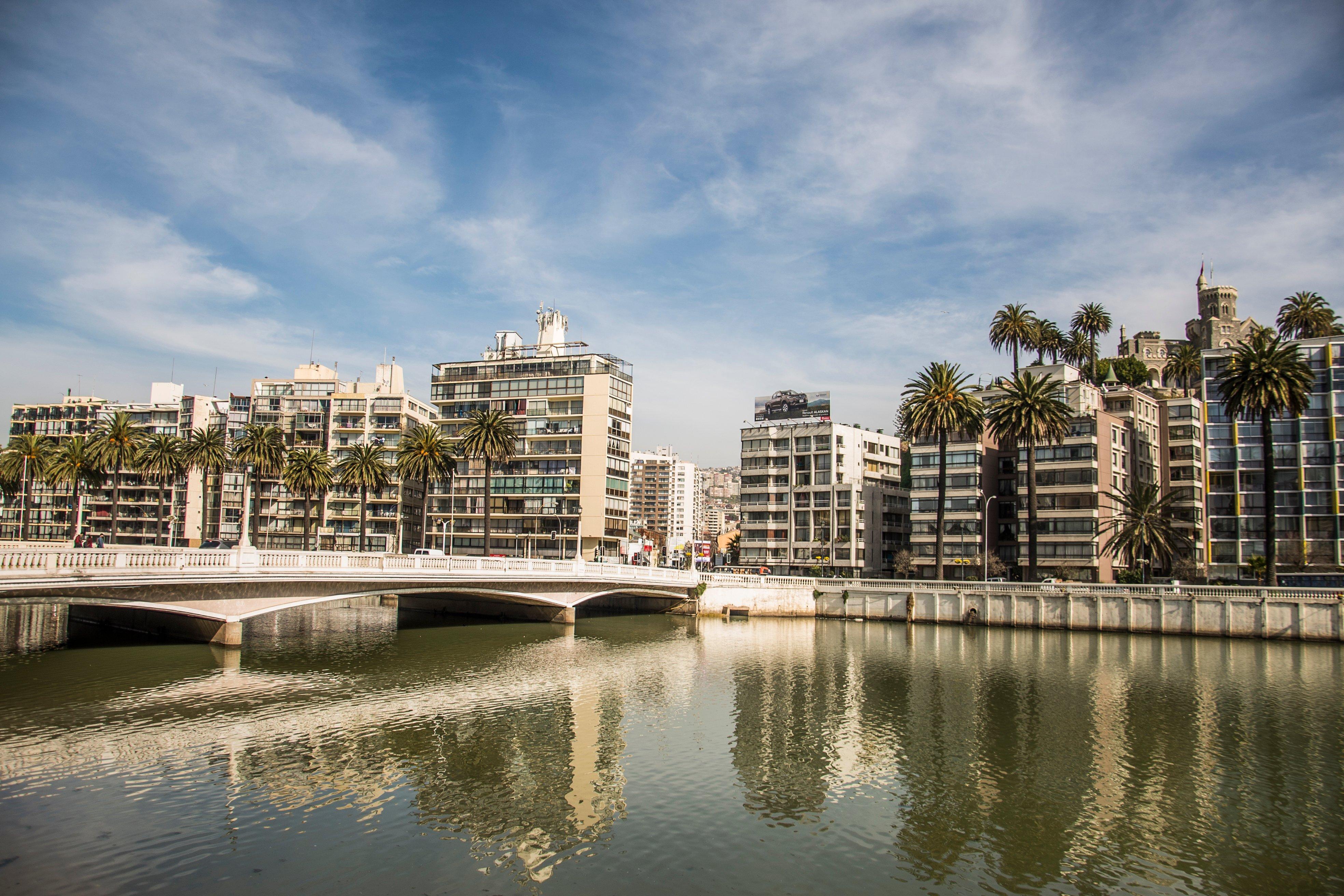 Puente y palmeras en Viña del Mar