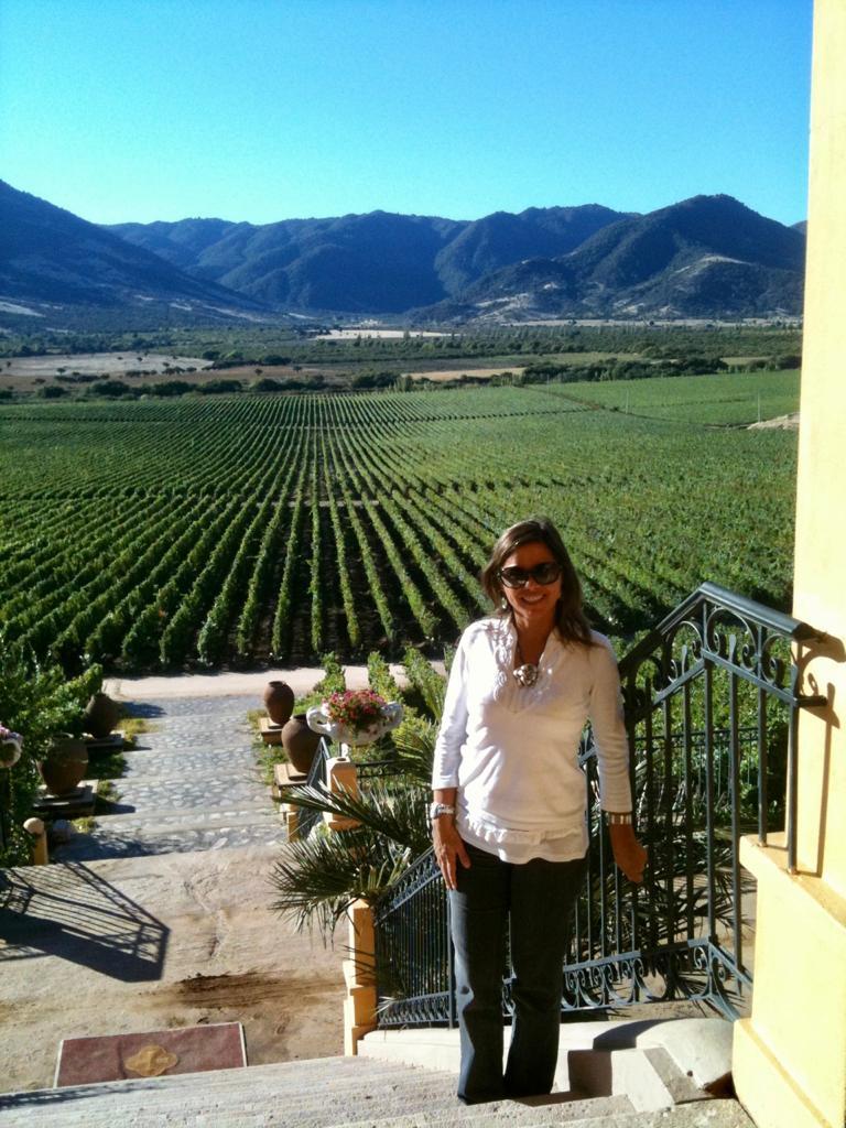 Viñedos de Viña Santa Cruz en Colchagua