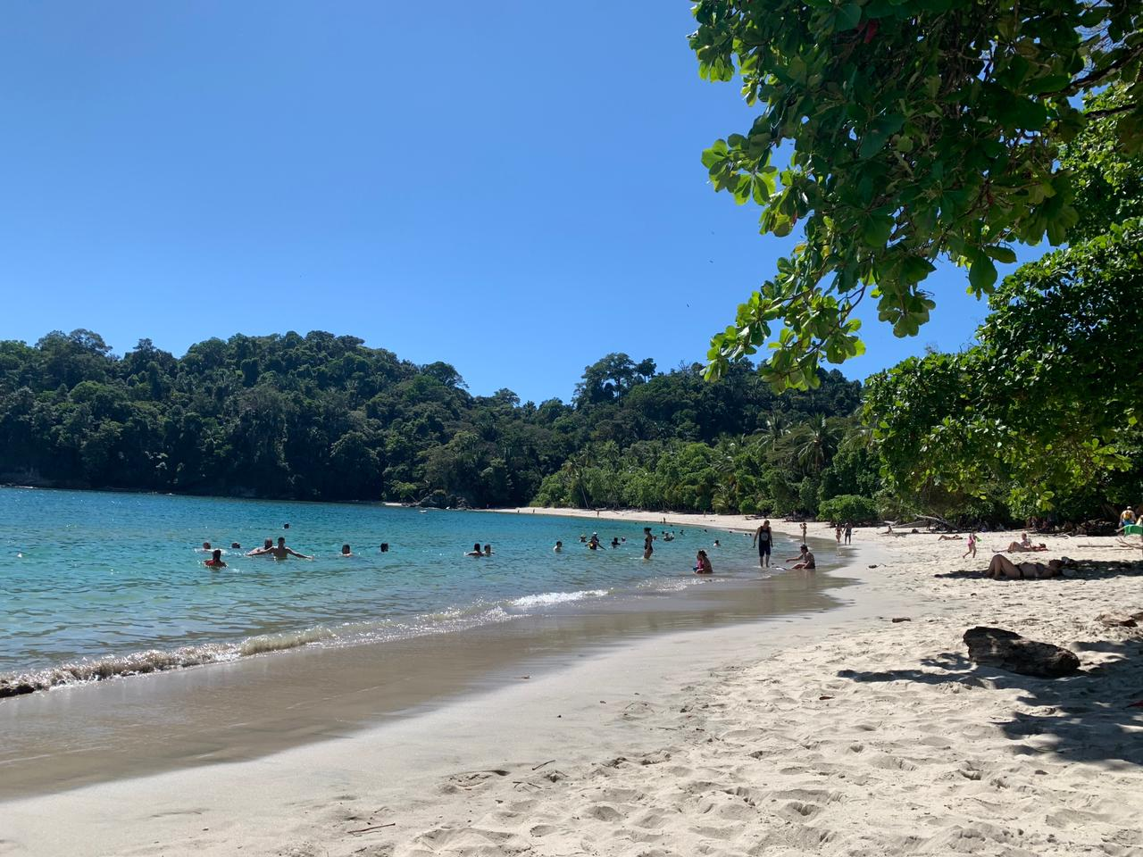 Playa del Parque Nacional Manuel Antonio