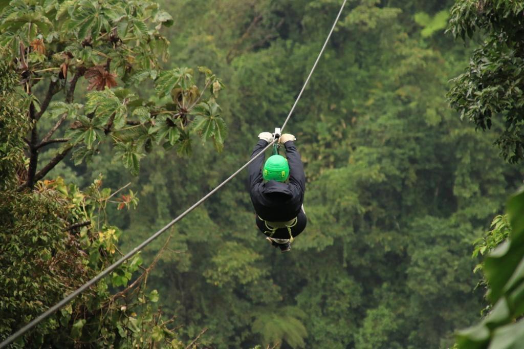 Canopy en volcán Arenal