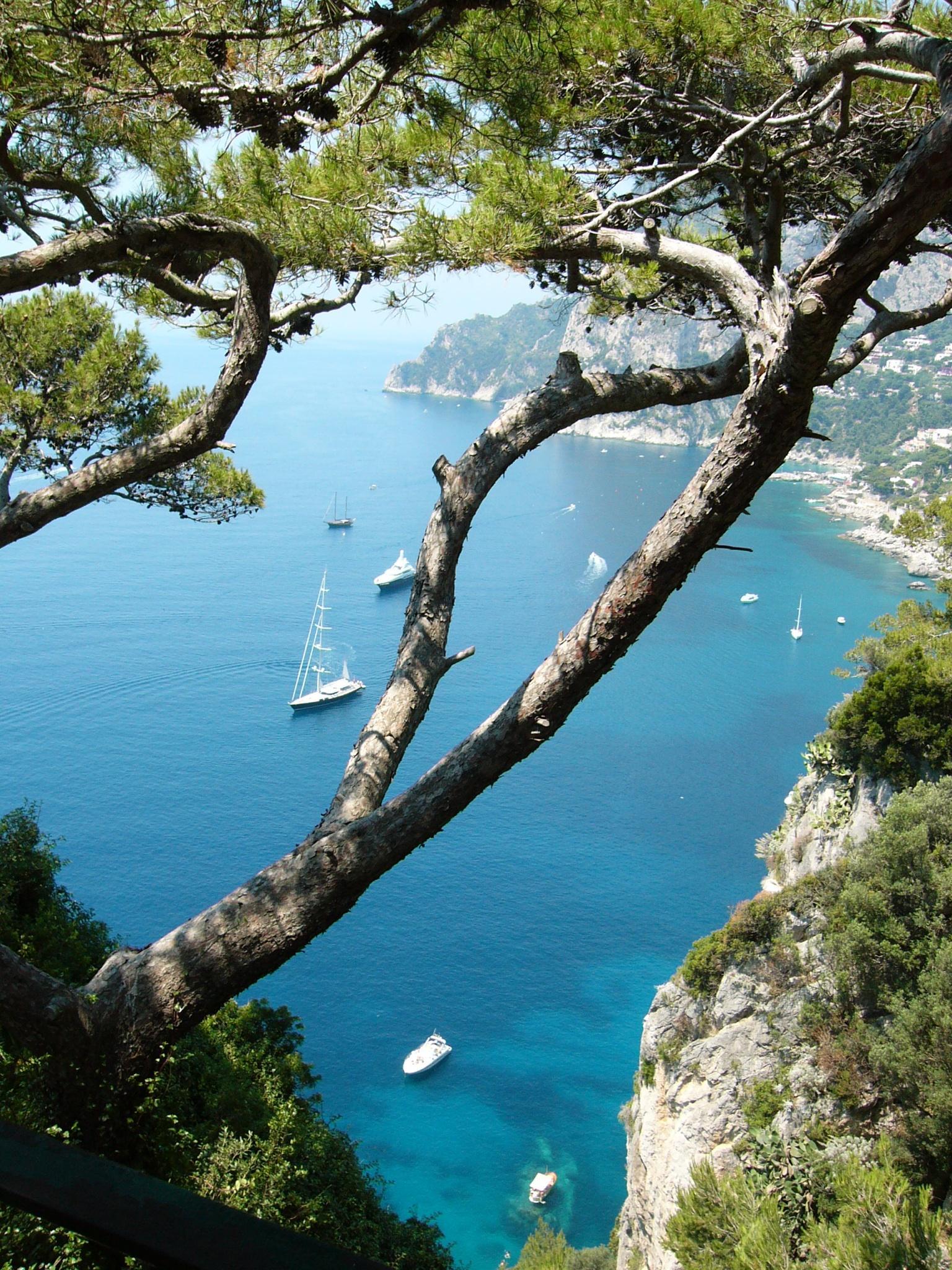 Paseo en lancha por Capri