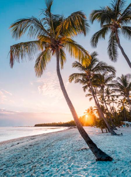 viajes-a-Punta-Cana
